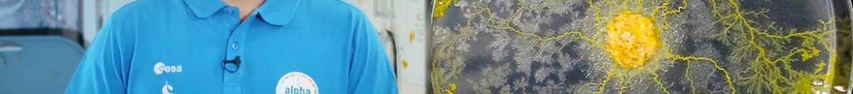 des-blobs-accompagneront-thomas-pesquet-dans-lespace-pour-faire-avancer-la-science
